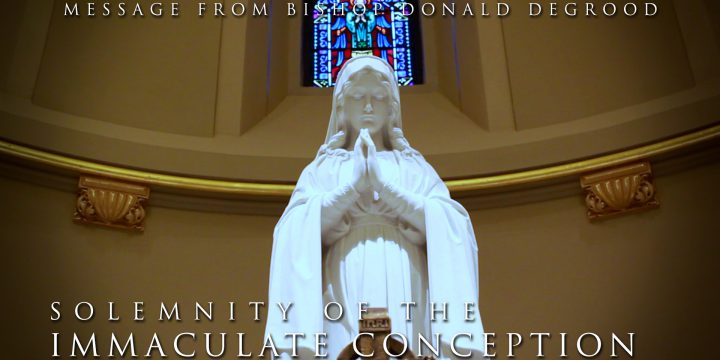 Message to the Faithful on this Solemnity of the Immaculate Conception